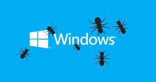 bug_windows